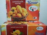 Fresh Kesar Mangoes. Free Delivery!