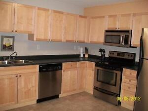 Gorgeous Deluxe Kitchen and In-Suite Laundry