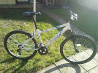 Mountain bike apollo phaze