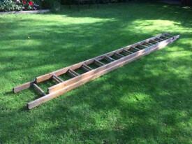 Builders wooden ladder.
