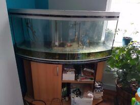 Aquarium for Swap/Sale