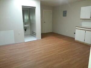 Nicely Renovated 1 bdrm Suite  Avail Today  $545.00
