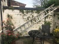 Double rung ladders