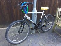 RALEIGH VEGAS MOUNTAIN BIKE INCL. LIGHTS AND LOCKS