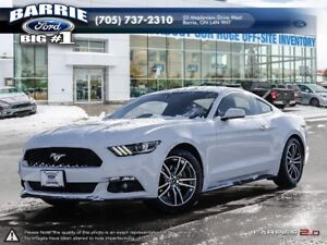 2016 Ford Mustang 2.3L Ecoboost Coupe