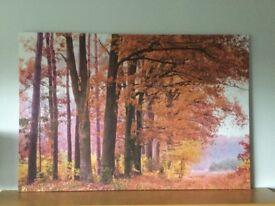 Large Autumn canvas picture. New.