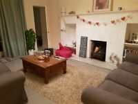 Room to rent in a beautiful flat in New Town (2 Jan to 30 April 2018) £450 pm