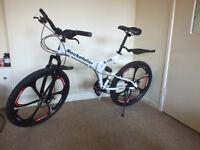 Rockefeller Folding Mountain Bike!