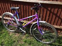 Retro lady's Raleigh mountain bike