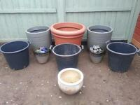 PLANT/FLOWER POTS /CONTAINERS
