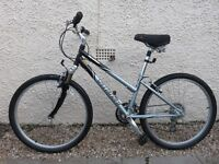 DALES, SPECIALIZED EXPEDITION BICYCLE
