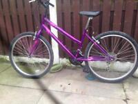 2 bikes Mans ladies