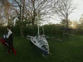 Lazer 4000 sailing dinghy