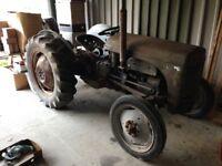 Grey Ferguson Tractor petrol/paraffin 1940's