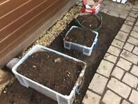 Garden topsoil
