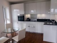 WOW! 2 BEDROOM WITH BALCONY DESIGNER FURNISHED CONCIERGE IN DUNCOMBE HOUSE,ROYAL ARSENAL RIVERSIDE