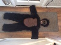 Lovely quality gorilla suit age 4-7