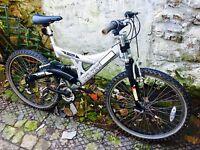 Vector mountain bike 21 gears 19 inch dual suspension frame 26 inch wheels
