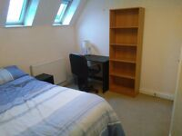 Double room in modern, spacious flat