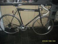 BARGAIN Dawes Audax Racing Road Bike Reynolds 531 Brooks Saddle Mavic 61cm VGC May Deliver