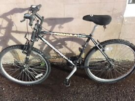 Selection of four bicycles all in good condition
