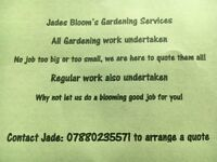 Garden & Property maintainance services