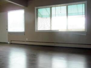 Newly renovated bachelor for $783 with free Telus high speed int Edmonton Edmonton Area image 2