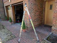 Beldray Multi-function step ladder