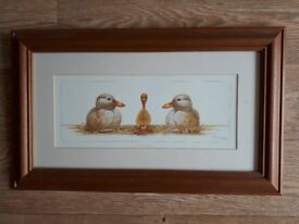 Picture, Print, Odd One Out by Warwick Higgs, Ducks, H32cm x W52cm, Framed
