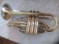 Amati Kraslice cornet