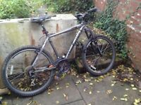 Mountain bike: new tyres /brakes, new derailer, strong frame, slight rust on chain. Free basic lock.