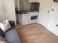Large split level studio flat. Excellent condition in Pimlico. All bills included.