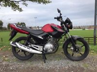 SOME NICE 125CC BIKES AND SCOOTER NEW AND USED FROM £699 AT KICKSTART BELFAST HONDA-YAMAHA-LEXMOTO