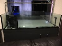 Coral Table 4ft 3ft 1ft with sump, cabinet and plumbing £325
