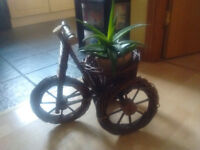 Bicycle Planter/ pot holder for indoors or outdoors £7