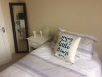 Professional wanted for Immediately Available Bedroom - £485 per month