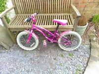 Childs Apollo bike 16 inch wheel