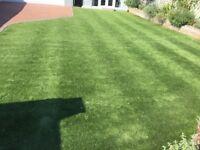 Artificial Grass - 'Easigrass' Mayfair in excellent condition