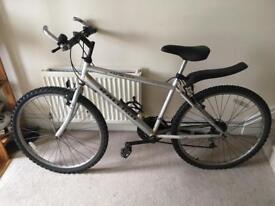 Silver Raleigh Bike