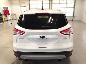 2014 Ford Escape SE| 4WD| ECOBOOST| SYNC| BACKUP CAM| 48,369KMS Cambridge Kitchener Area image 5