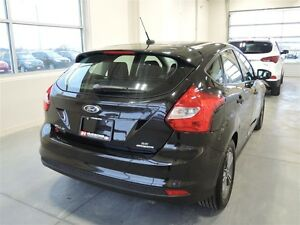 2014 Ford Focus SE Hatchback - One Owner Stratford Kitchener Area image 5