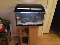 60 litre fish Tank and matching stand as new