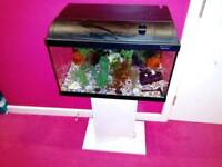 2ft fish tank for sale