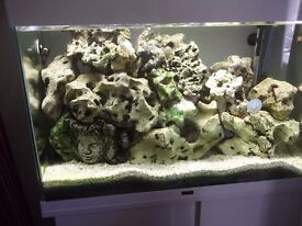 OCEAN ROCK AROUND 20 PIECES IDEAL FOR MALAWI OR MARINE
