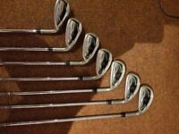 Taylormade irons (5-SW), Driver & carry bag