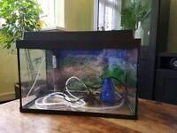 15L aquarium with accessories