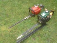 PETROL HEDGE TRIMMERS £40 EACH