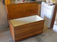 Trunk/toy chest