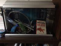 Fish Tank / Aquarium - Cat not included :)