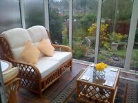 Four piece gold cane conservatory furniture - 2 single chairs, two seater settee and coffee table